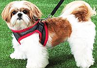 Поводок для Собачек Comfy Control Small Dogs