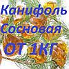 Канифоль сосновая в бочках и на развес c доставкой по Украине