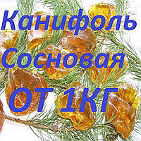 Канифоль сосновая в бочках и на развес c доставкой по Украине, фото 1