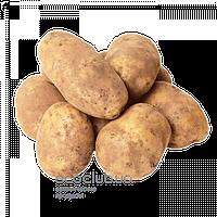 Картофель фермерский 1кг