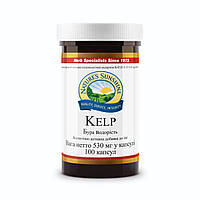 Kelp  Бурая водоросль