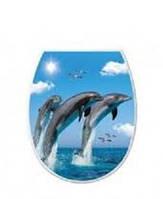 Сидение для унитаза Elif Дельфины