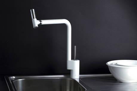 Смеситель кухонный Webert Kitchen TS920301, фото 2