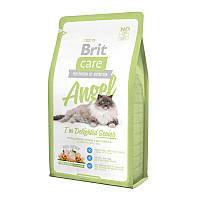 Brit Care Cat 2 kg Angel для пожилых кошек