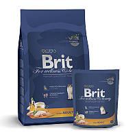 Brit Premium Cat Adult Chicken  300g для взрослых с курицей