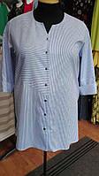 Блуза в бело-синюю полоску на пуговицах