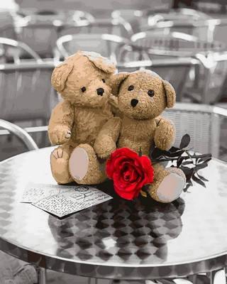 Набор-раскраска по номерам Влюбленные мишки Худ Асаф Франк, фото 2