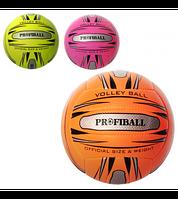 Мяч волейбольный PROFIBALL Official 1101ABC: , фото 1