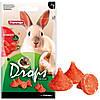 Лакомство Karlie-Flamingo Drops Strawberry для грызунов, с клубникой, 75 г