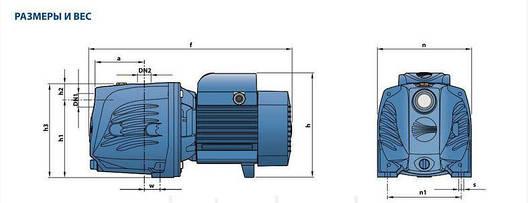 Насос центробежный Pedrollo JSWm 3CL-N, 1100 Вт, 9,6 м3/ч, 42 м, фото 2