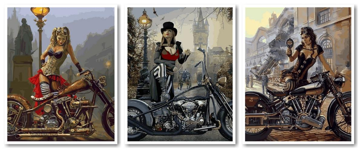 """Раскраска по номерам """"Триптих Путешественницы во времени 2 Худ Дэвид Уль"""""""