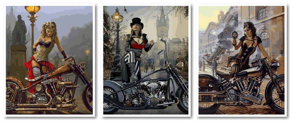 """Раскраска по номерам """"Триптих Путешественницы во времени 2 Худ Дэвид Уль"""", фото 2"""