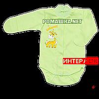 Детский боди с длинным рукавом и царапками р. 56 демисезонный ткань ИНТЕРЛОК 100% хлопок ТМ Алекс 3175 Зеленый