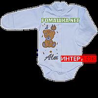 Детский боди с длинным рукавом и царапками р. 62 демисезонный ткань ИНТЕРЛОК 100% хлопок ТМ Алекс 3175 Голубой