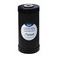 Картридж для видалення хлору Ecosoft 4,5 х 10