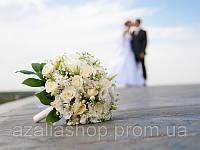 Роза белая+эустома белая в свадебном букете