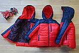 Курточка детская демисезонная Драйв для мальчика(134см.), фото 4