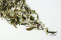 Зелёный чай Маофен Юньнань, 2017г., фото 1