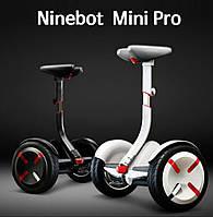 Monorim Ninebot mini Pro 10,5