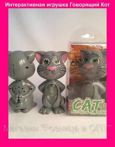 Интерактивная игрушка Говорящий Кот с подсветкой и функцией звукозаписи Cat Talking Multi-function, фото 2