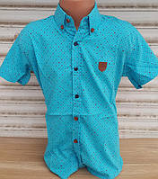 Рубашка для мальчика на кнопках
