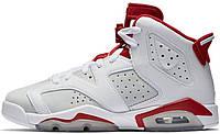 Мужские баскетбольные кроссовки Air Jordan 6 Hare