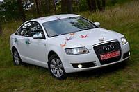 Audi A6 аренда свадебной машины белого цвета
