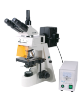 Микроскоп люминесцентный XSZ-146TP (FLUO) Ulab