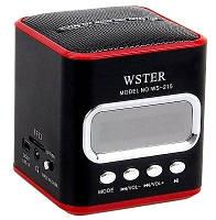 Портативная колонка WS-215 с радио и mp3