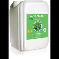 Флагман Экстра контактно-системный гербицид для контроля сорняков в посевах сои