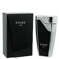 Мужская парфюмерная вода Evoke 100ml. Armaf (Sterling Parfum)