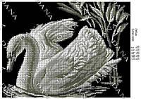 """Схема для полной вышивки бисером """"Лебедь"""""""