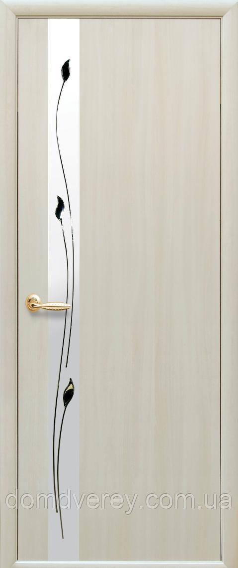 Двері міжкімнатні Новий Стиль, КВАДРА, модель Злата ПВХ DeLuxe, з дзеркалом і малюнком P1