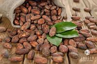 Какао бобы сырые 1 кг