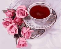 Рисование по цифрам. Чай с суданской розой