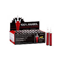 EnergyBody Systems Amino Anabol 30x25ml