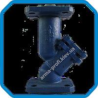 Фильтр сетчатый фланцевый Ду 25 Armline