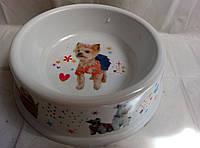 миска для собак на выбор