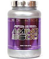 Купить аминокислоты Scitec Nutrition Amino 5600 (1000 tabs)