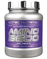 Купить аминокислоты Scitec Nutrition Amino 5600 (500 tabs)