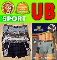 Трусы мужские боксеры х/б UB (Universe Bird) ТМБ-521