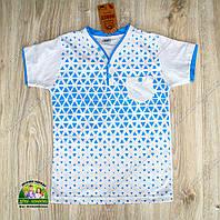 Летняя футболка для мальчика бело-голубая