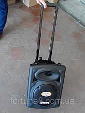 Колонка с аккумулятором Temeisheng USB 297 L, фото 3