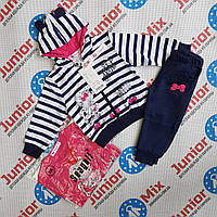 Детские спортивные трикотажные костюмы для девочки тройка Seagull, фото 1