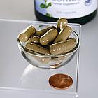 Swanson Premium Herbal Prostate Combo простаты здоровье  200 капс, фото 2
