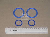 Рем комплект системы охлаждения Камаз (2 позиций) (синий силикон) (Производство ГарантАвто)