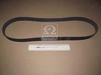Ремень поликлиновый (Производство Contitech) 8PK1215