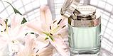 Cartier Baiser Vole туалетная вода 100 ml. (Картье Поцелуй Полевка), фото 3