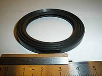 Кольцо уплотнительное масляного фильтра ГАЗ 3306, 3307, 3309, 4301 (542.1017117, фторкаучук, пр-во Россия)