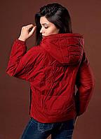 Женская курточка цвета марсала